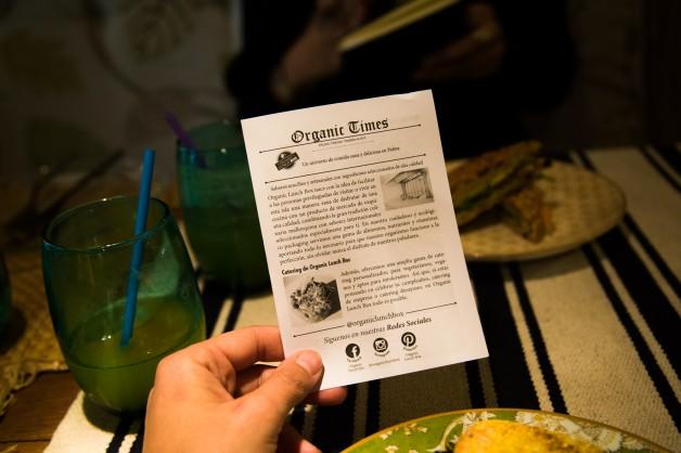 organic_lunchbox (15 de 23)