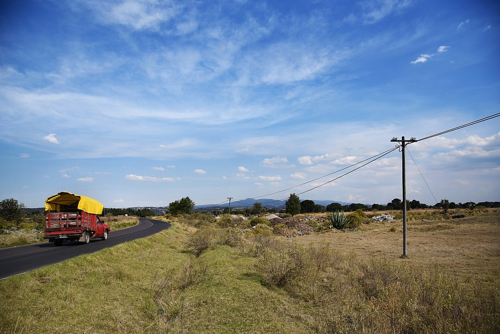 Carretera con maguey