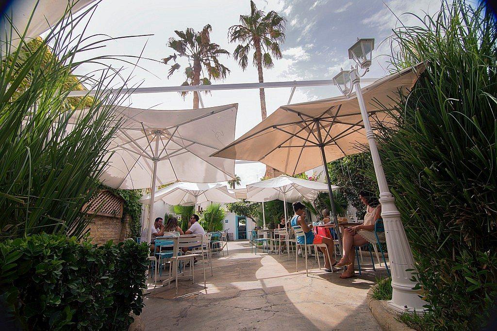 la-mas-bonita-terraza-palmeras-ambiente