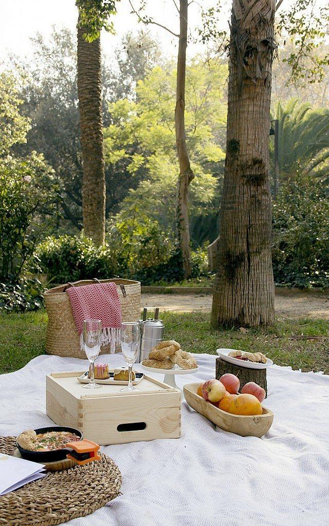 picnic_sinbotella